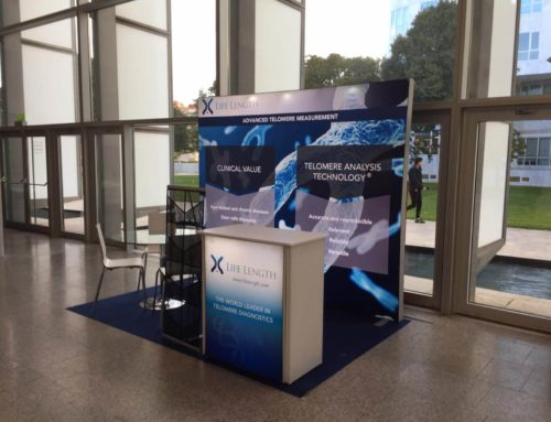 Backlit Exhibition Stand and Counter